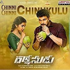 Chinni Chinni Chinukulu Naa Songs Download