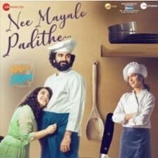 Nee Mayalo Padithe Naa Songs