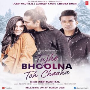 Tujhe Bhoolna Toh Chaaha Song Download